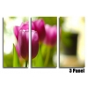 Pink Tulips Floral
