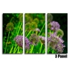 Purple Grasses Floral