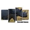 Rhinos 2