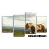 Dartmoor Pony Horse