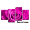 Bright Pink Rose Floral
