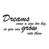 Dreams come...