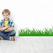 Grass Edging