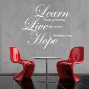 Learn, Live, Hope Wall Sticker - Wall Quotes