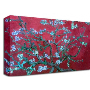 Almond Blossom Red Van Gogh