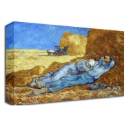 The Siesta Van Gogh