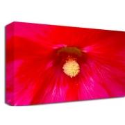 Pink Flower Floral