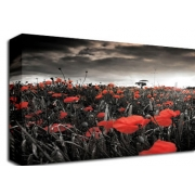 Poppy Storm Field Sepia Hint Floral