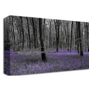 Bluebell Forest Floral (Colour Splash)